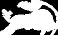 logo_gcsalzburg